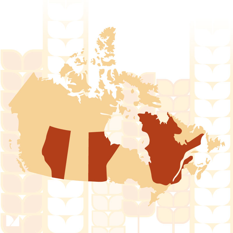 Beer drinking age in Canada